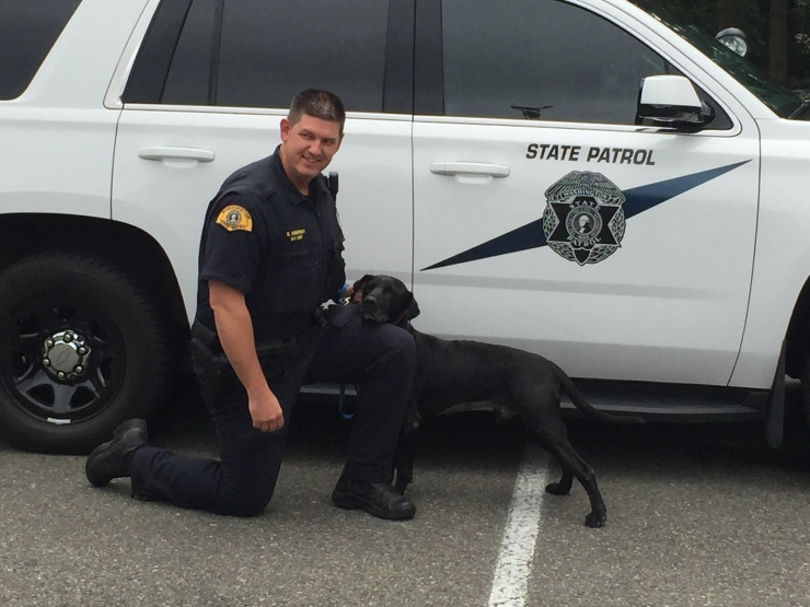 k9-ice-and-genoway